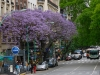 street life in Buenos Aires
