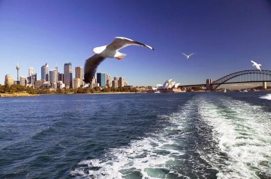 Australia Landscape Of Sydney