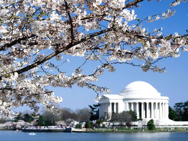 Jefferson (NC) United States  city photo : United States Washington Jefferson Memorial 17 Mytoour.com